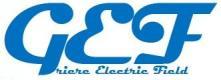 logo Griere Electic field, G.E.F.